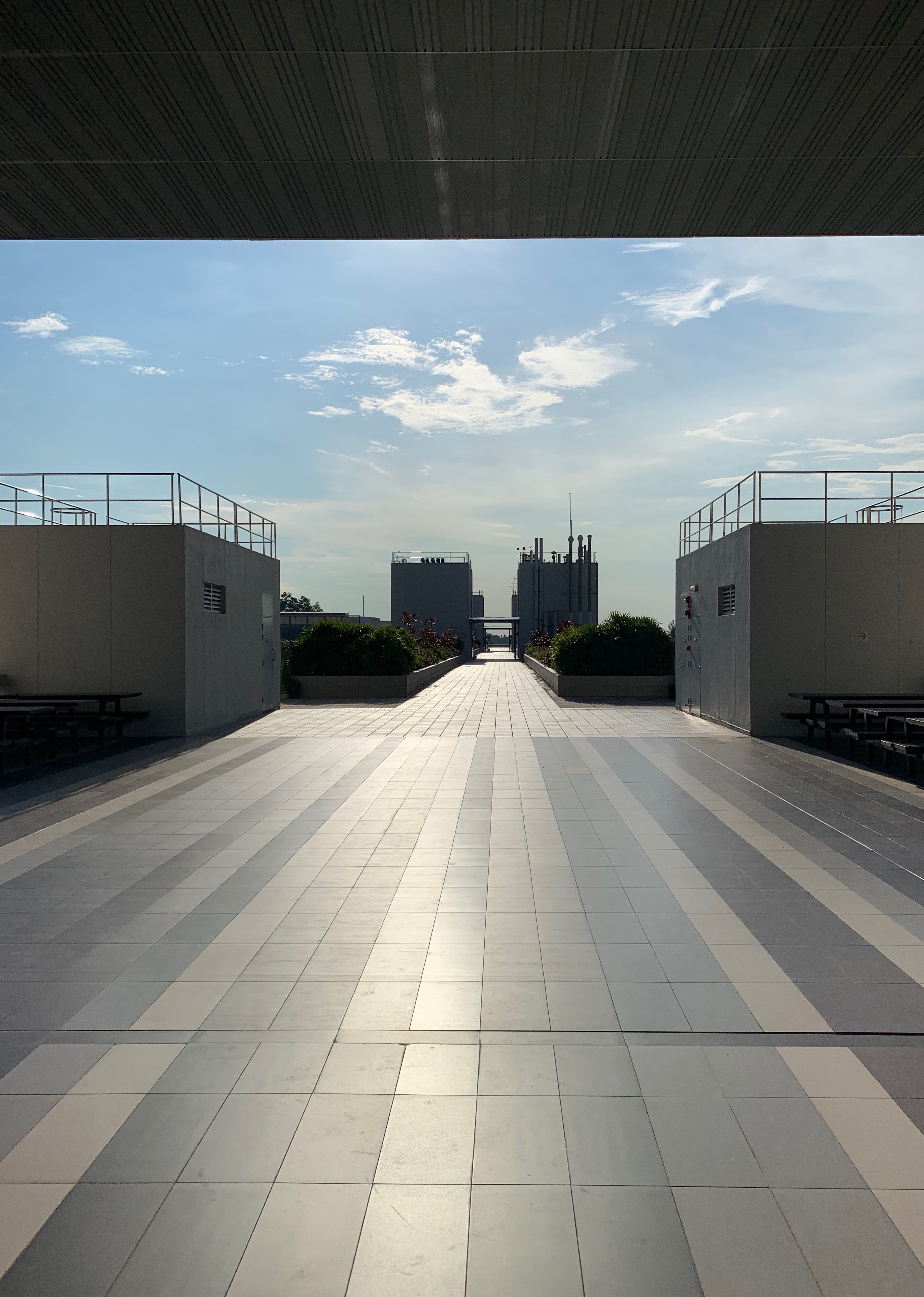 On the roof of the North Spine at NTU, Singapore 2019.